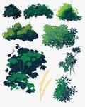 Skecth Foliage2