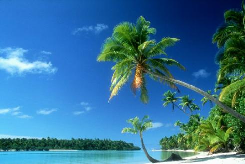 beach by DieselChick