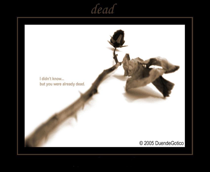dead... by DuendeGotico