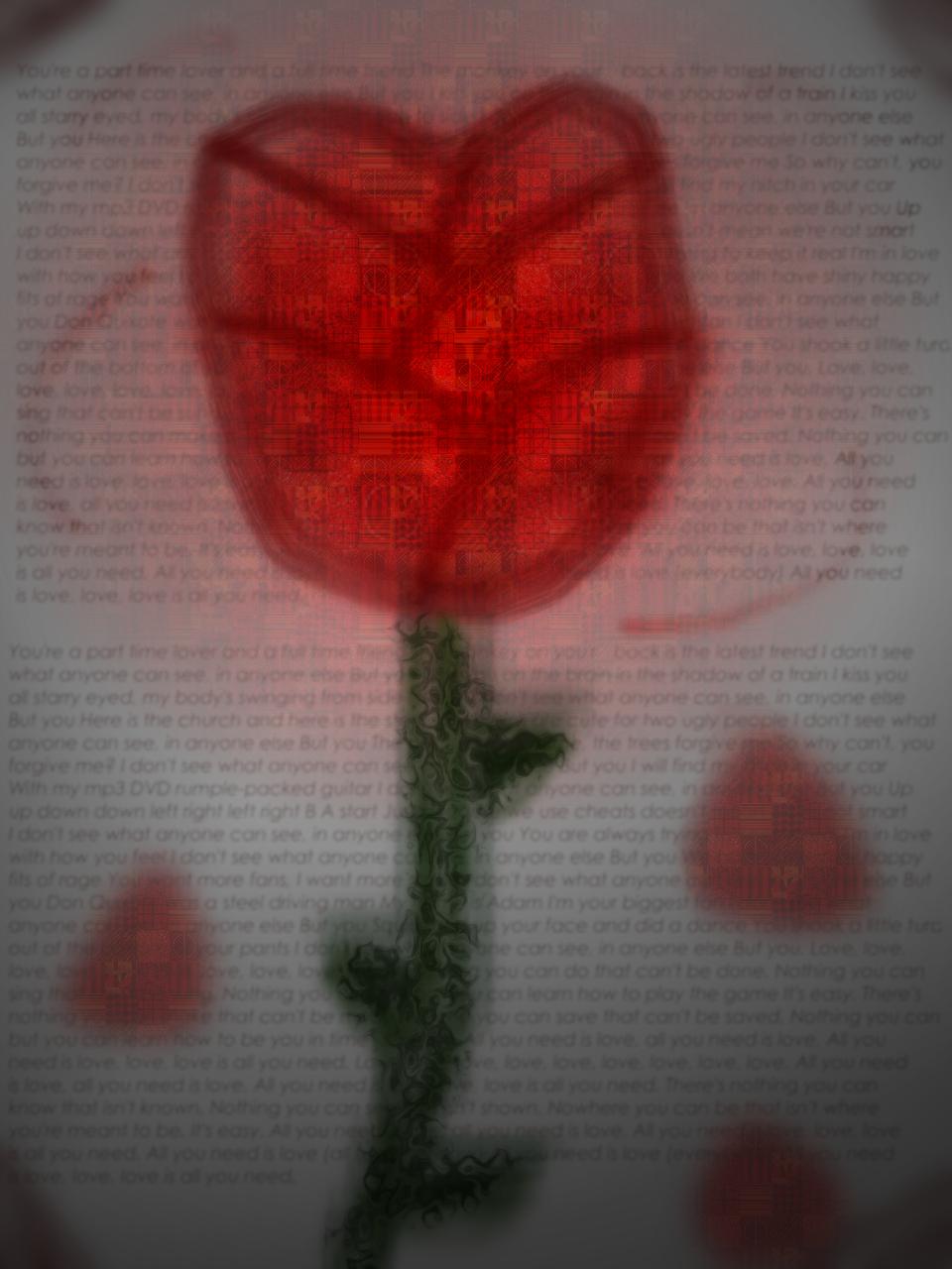 Rose by rabidcentipede