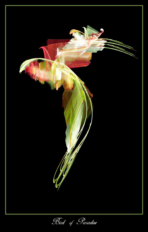-Bird of Paradise- by xluluhimex
