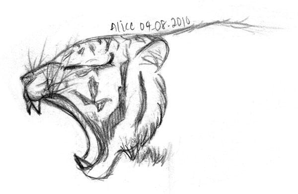 Tigre Sketch: Tiger Sketch Templates
