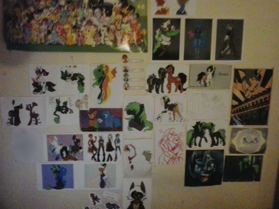 [Crappy Photo] The Wall of Awesome by HazelCapulus