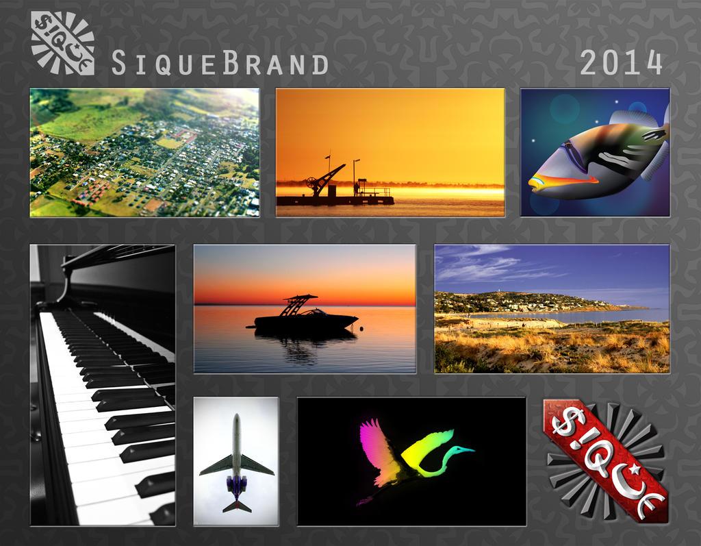 SiqueBrand's Profile Picture