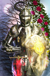 Knight of Light and Darkness