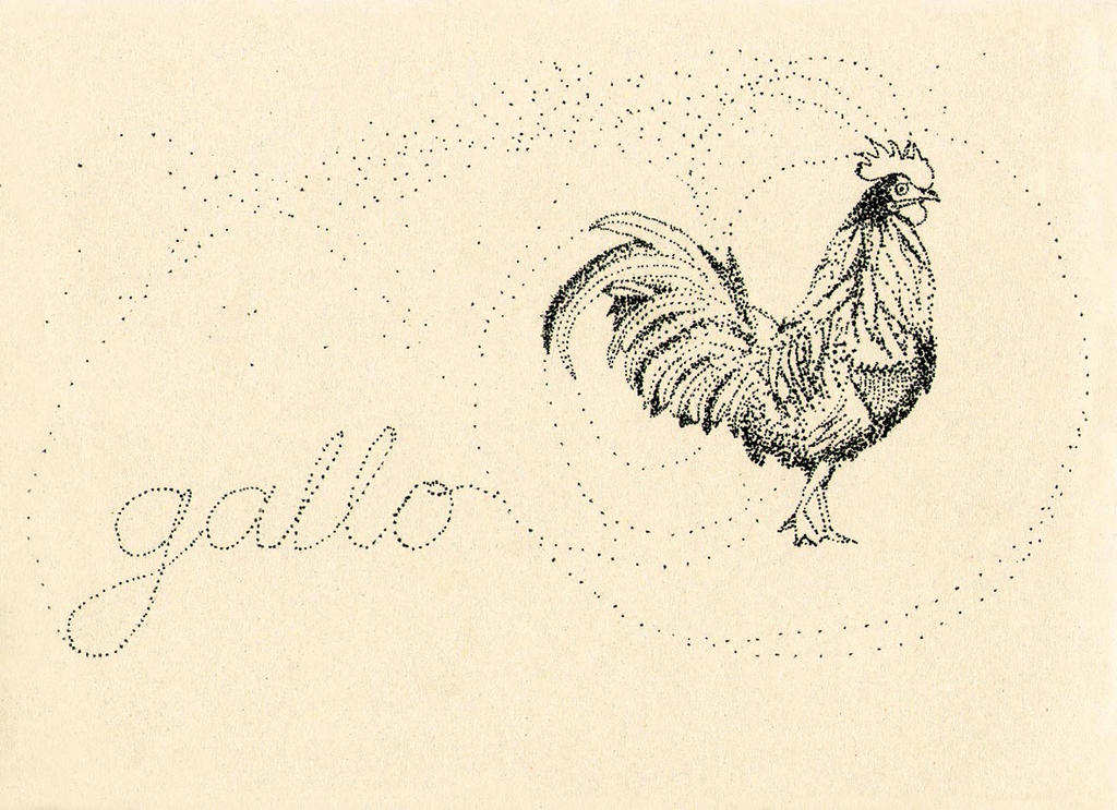 Gallo by sapfonelo