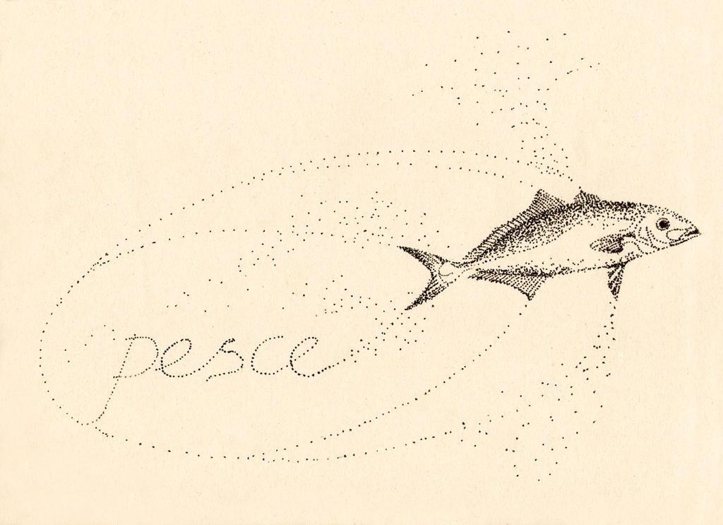 Pesce by sapfonelo