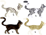 Cat Adopts (OPEN 4/4) by Cometiara