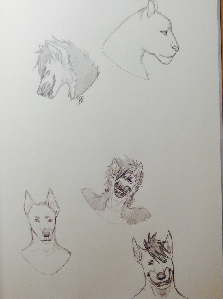 eh animal study i guess by snowytaido
