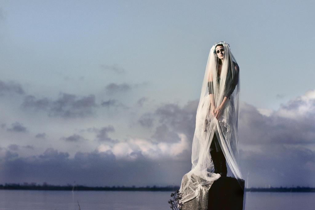 Nostalgia ...........   Corpse Bride by S-T-A-R-gazer