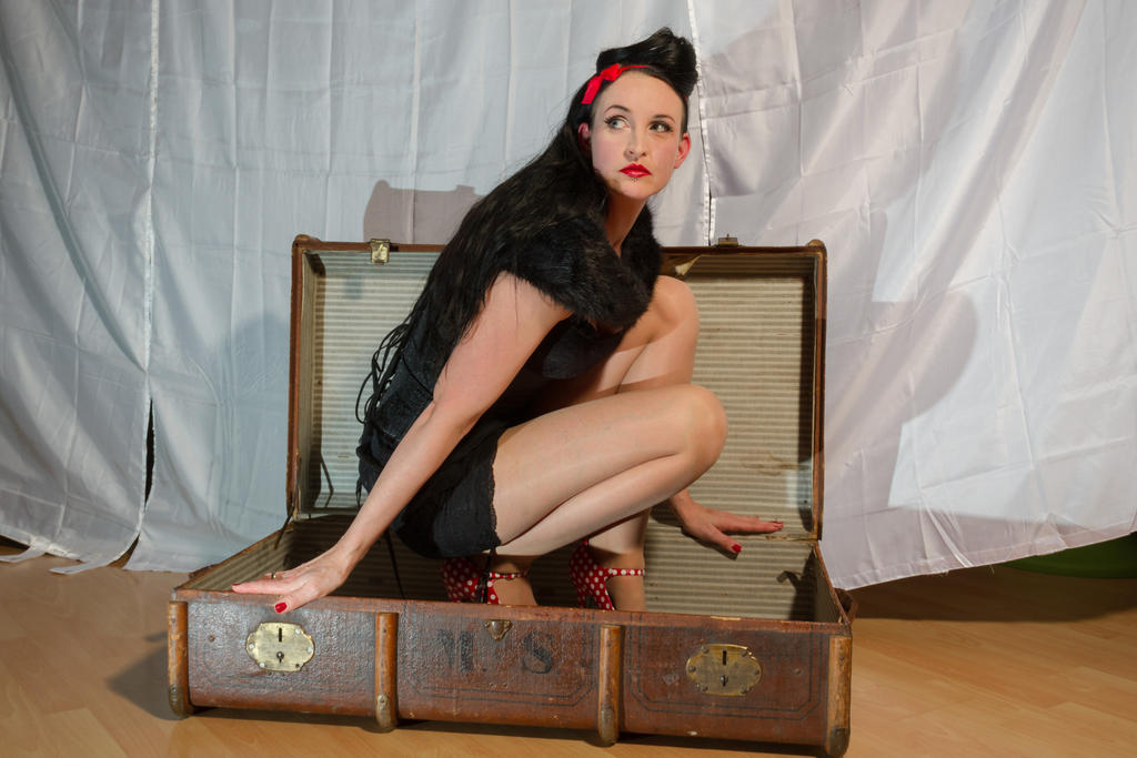 Stock - Pin-up in a case by S-T-A-R-gazer