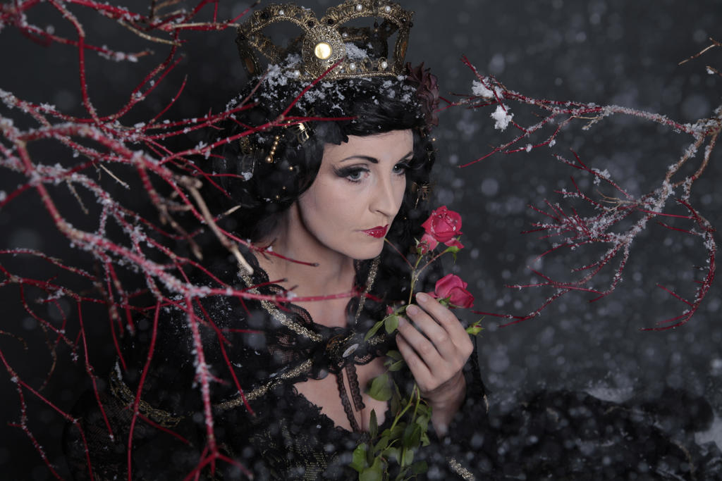 Stock - Fairy tale Fantasy Snow white roses 3 by S-T-A-R-gazer