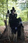 Stock - Halloween special witch on a tree