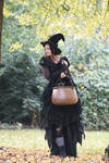Stock - Halloween special witch .. Cauldron walk