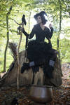 Stock - Halloween special witch sitting on tree