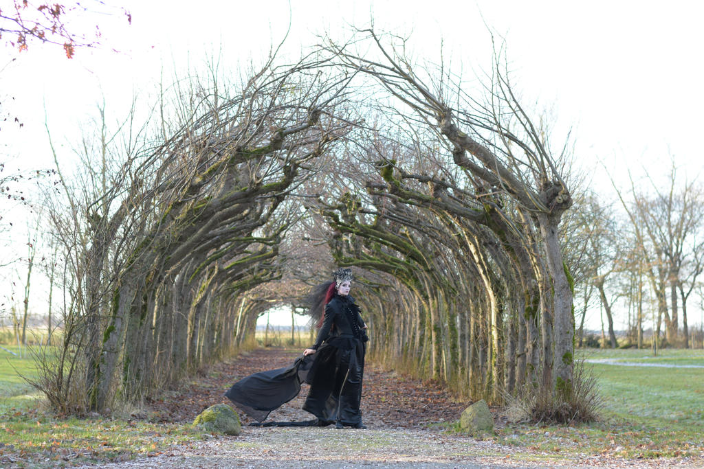 Stock - Gothic dark fantasy tunnel of trees 4 by S-T-A-R-gazer