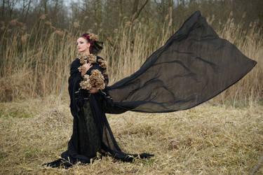Stock - gothic lady  hydrangea   ToneArt 12 by S-T-A-R-gazer