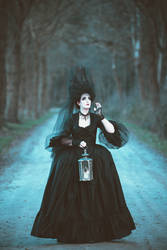 Searching for my ravens ....  gothic baroque