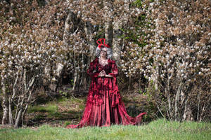 A walk in the woods... the red queen