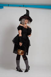 Stock - Halloween grey witch with a cauldron 16