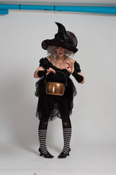 Stock - Halloween grey witch with a cauldron 17