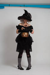 Stock - Halloween grey witch with a cauldron 18