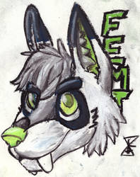 Femt badge raffle sample