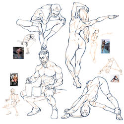 Anatomy studies from reference
