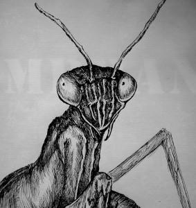 Mloda999's Profile Picture
