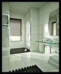 The bathroom by cuatrod