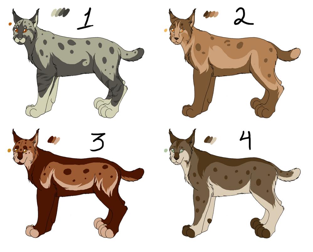 Point adopt Lynx-bobcat by Kaeda-adoptables on DeviantArt for Lynx Vs Bobcat  53kxo