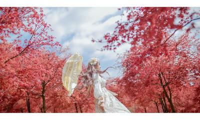 spring  by 35ryo