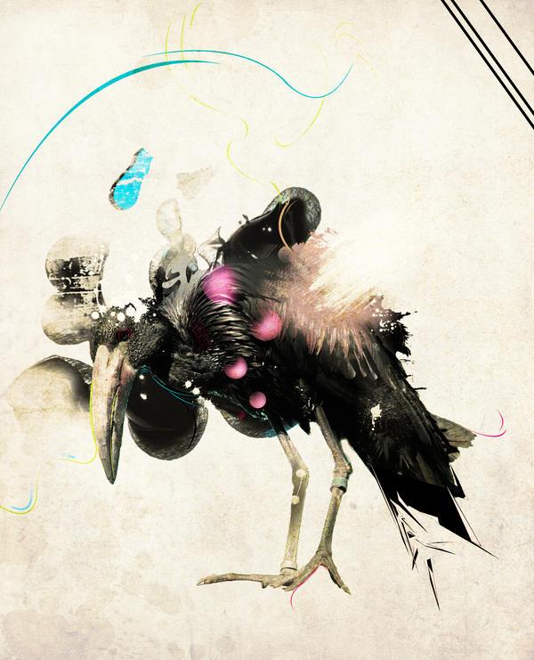 Evil bird by BOBBb12345