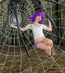 Trapped in the Spider's web