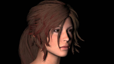 Shadow of the Tomb Raider Hair Research by edytibi