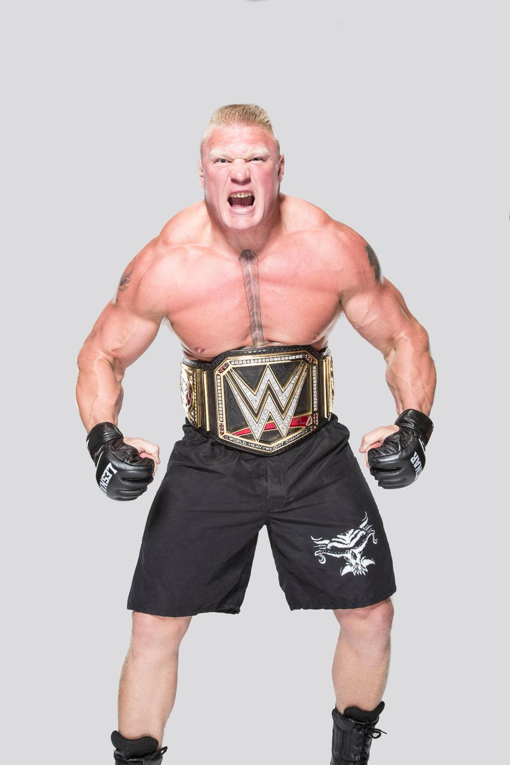 Brock Lesnar WWE World heavyweight Champion by Nibble-T on ...