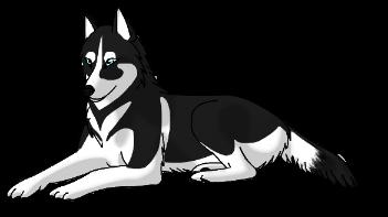 HuskyLeft by WhiteThorn13