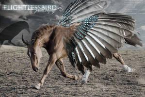 flightless bird. by insidethemind-art