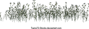 Flower 3 by Twins72-Stocks