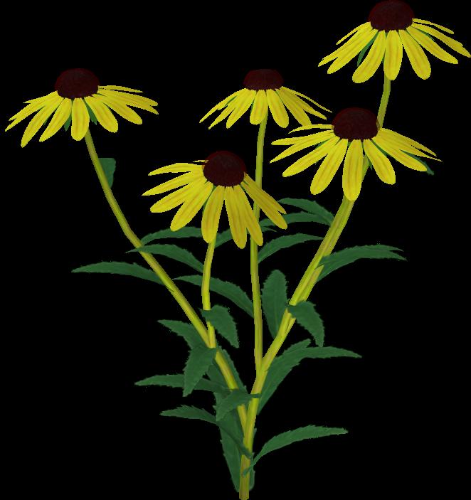 Flower 10 by Twins72-Stocks