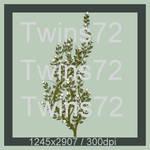 108-Twins72-Stocks