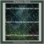 Mixed III-Twins72-Stocks-8 by Twins72-Stocks