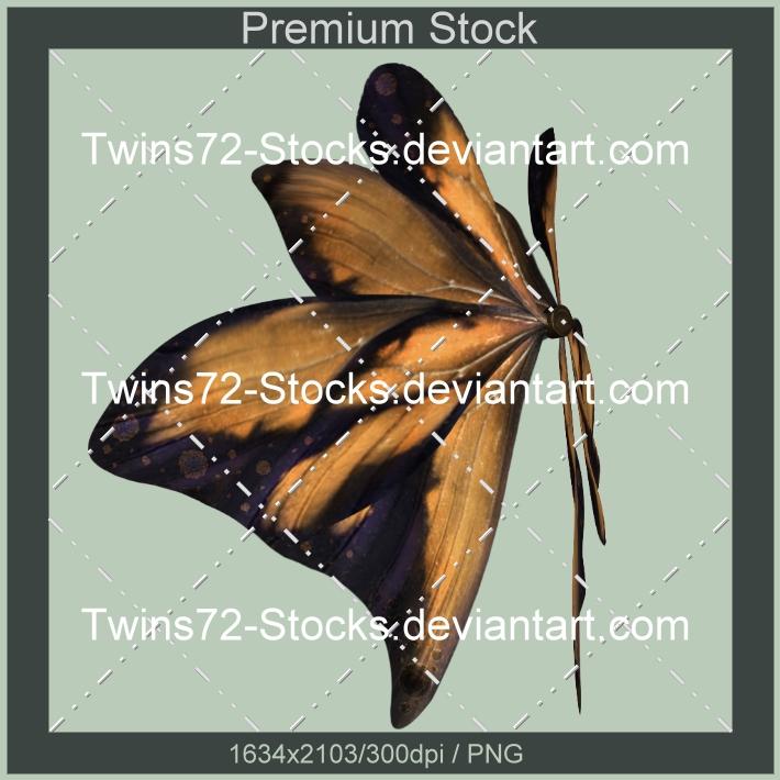 383-Twins72-Stocks by Twins72-Stocks