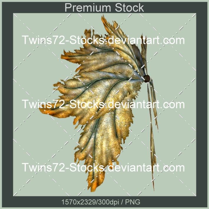 384-Twins72-Stocks by Twins72-Stocks