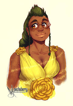 Anise - Colour Practise