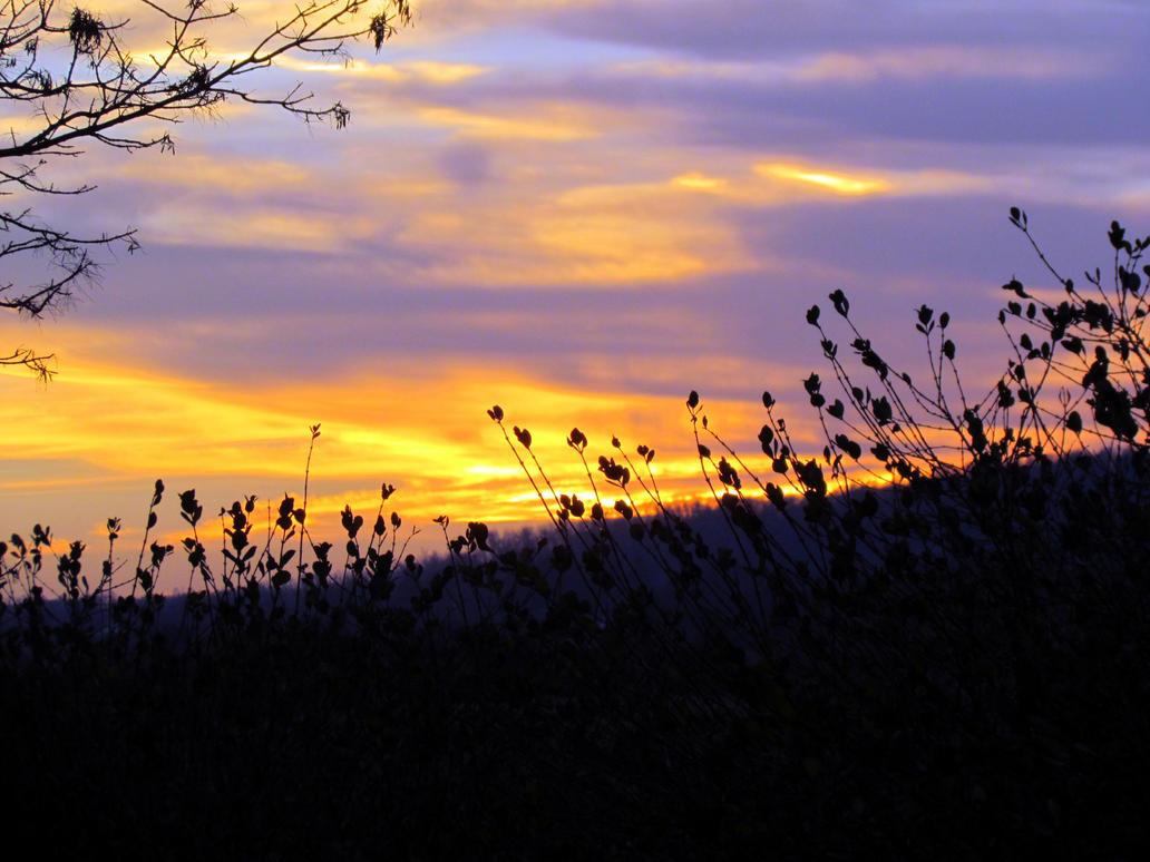 Virginia Sunset III by RealityIntolerant