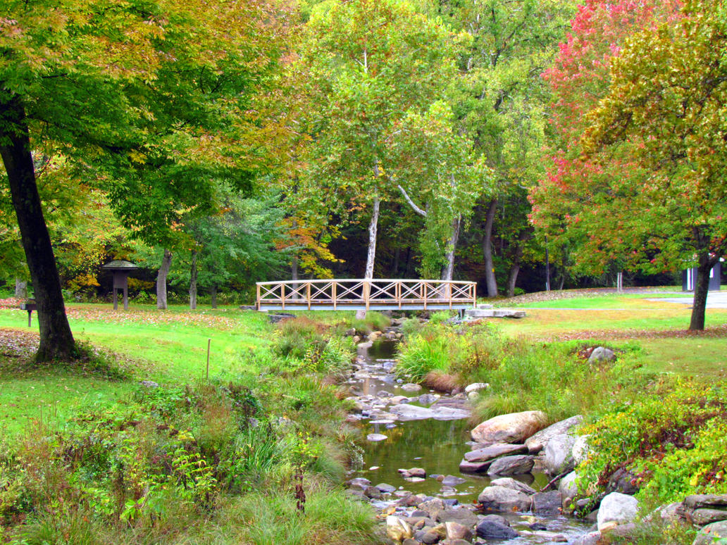 Autumn Creek by RealityIntolerant
