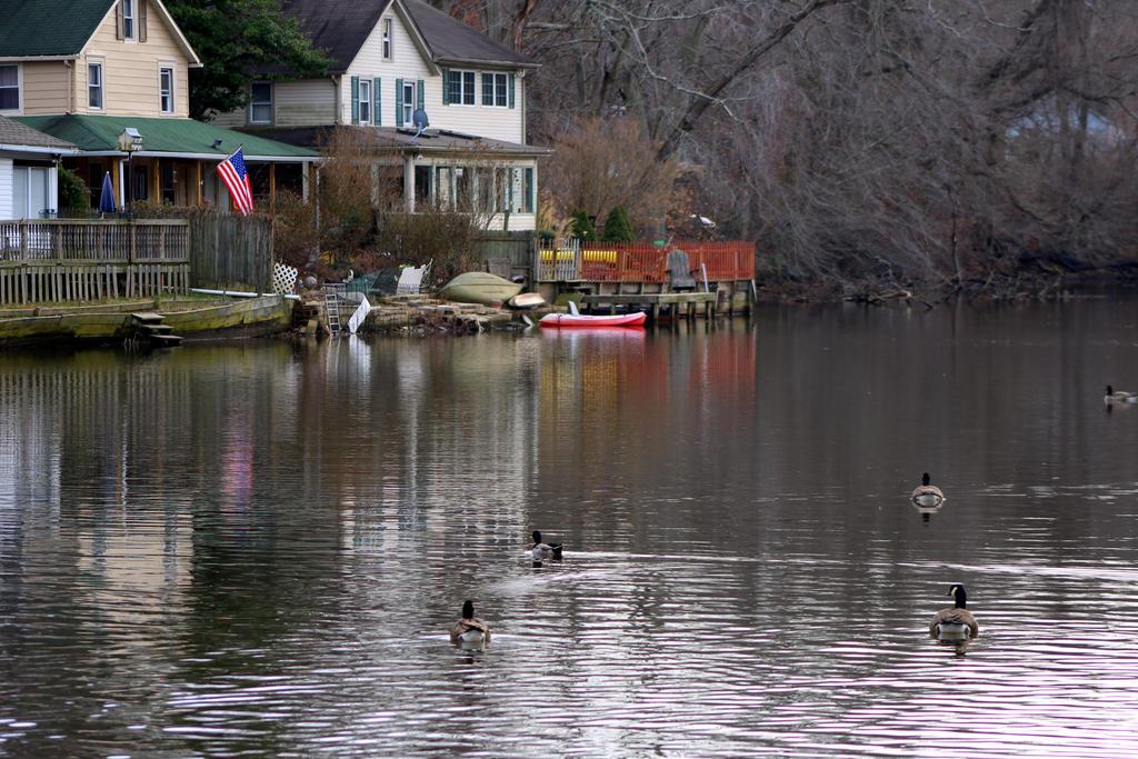 Lakefront Scenery by RealityIntolerant