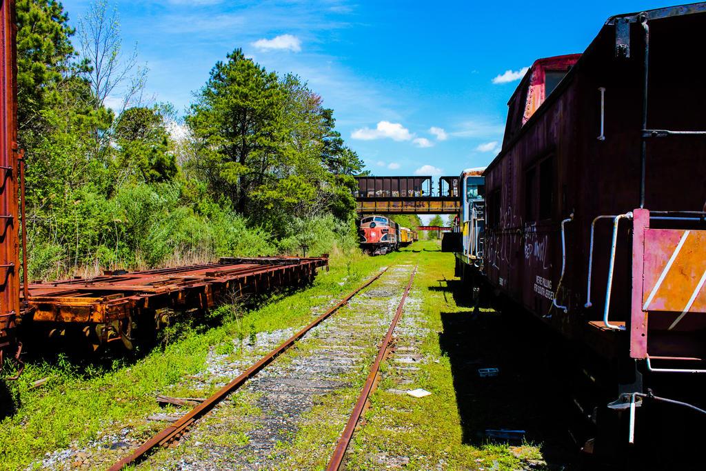 Train Graveyard by RealityIntolerant