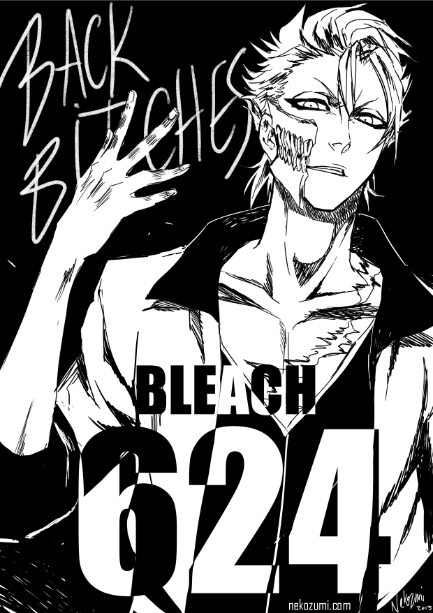 BLEACH - KING IS BACK (SPOILER 624) by Jennaris